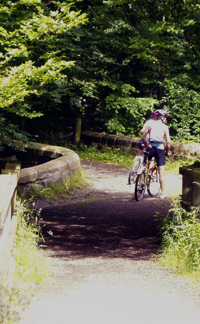 Cyclists in Roslin Glen.