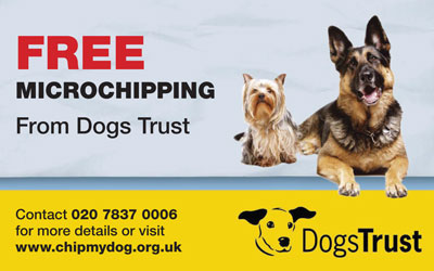 Get your dog microchipped for free
