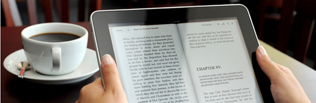 eBook, eAudiobook and eMagazine service