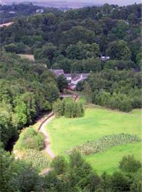 Aerial shot showing grass park surrounded by thick tree areas