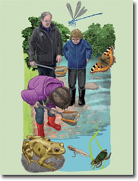 Illustration of adult and children at a pond with wildlife